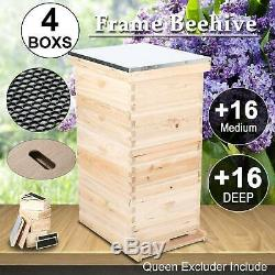 10-Frame Size Hive Frame/Bee Hive /Beehive Frames withQueen Excluder Metal Roof