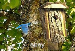 Bluebird House for Outdoor Backyard Rustic Natural Wood Looking Pine To Attract