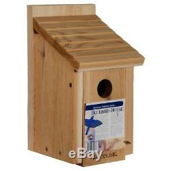 Woodlink Cedar Bluebird House and Erva Pole Package Kit 4 Pack